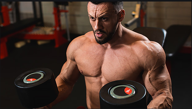 Learn more about muscle building supplements