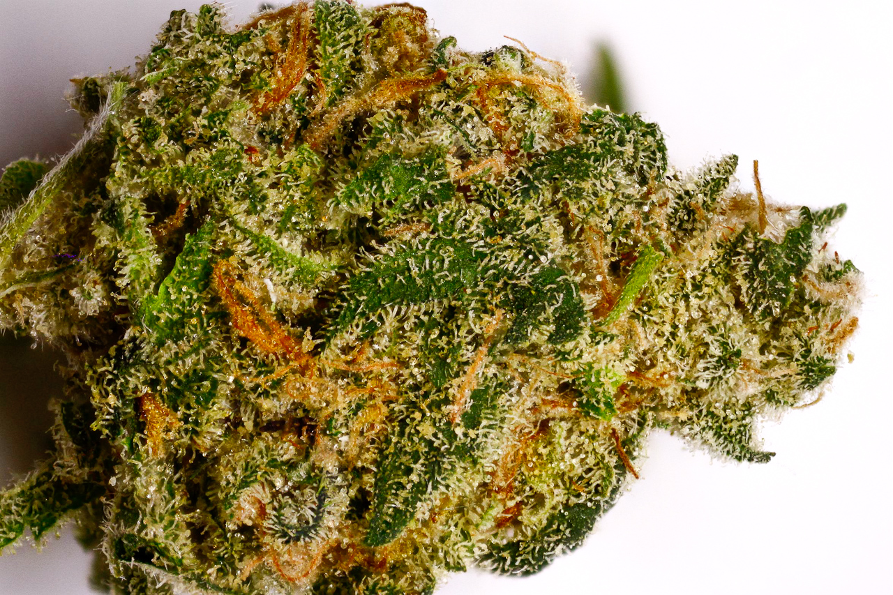 Cost To Buy Weed Online Canada